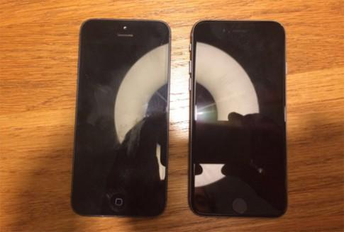 iPhone 5se lộ diện qua ảnh chụp cạnh iPhone 5