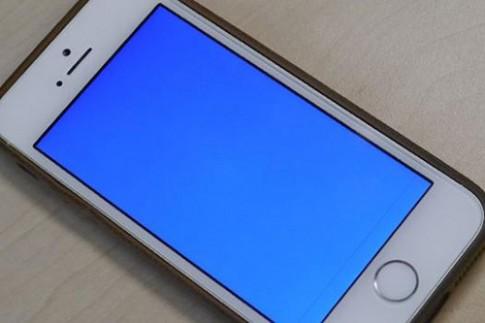 iPhone 6 dính lỗi màn hình xanh và tự khởi động lại