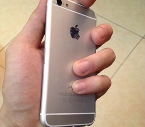 iPhone 6c màn hình 4 inch lộ ảnh thực tế