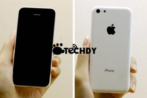 iPhone giá rẻ chưa ra mắt đã có 'hàng nhái'