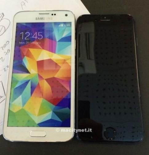 Mô hình iPhone 6 đọ dáng với iPhone 5S, Galaxy S5