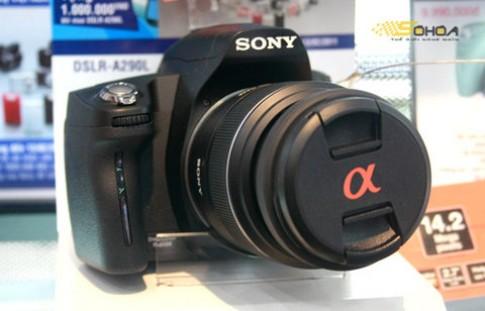 Ngắm DSLR Alpha A290 của Sony