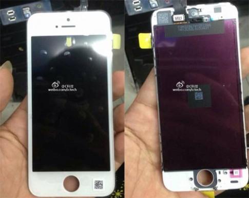 Những hình ảnh mới về iPhone 5C giá rẻ