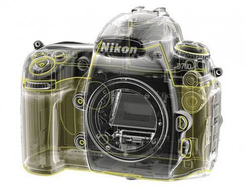 Nikon D800 có thể mang cảm biến 36 Megapixel