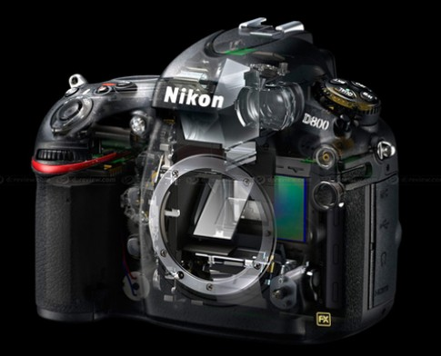 Nikon trình làng D800 và D800E
