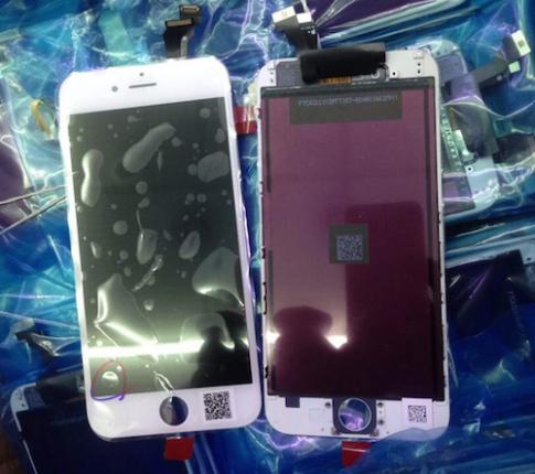 Smartphone 5,5 inch của Apple có thể mang tên iPhone 6L
