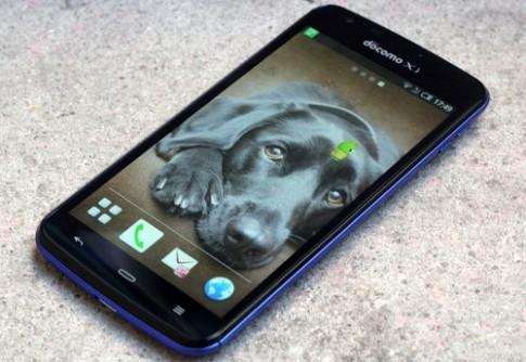 Smartphone Full HD chống nước kiểu mới của Sharp