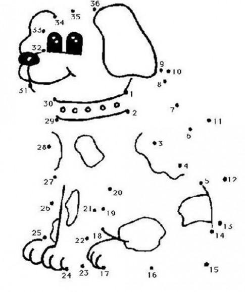 Tranh nối 'Chú cún con'