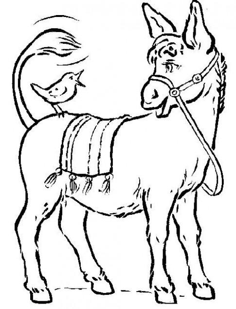 Tranh tô màu 'Chú ngựa'