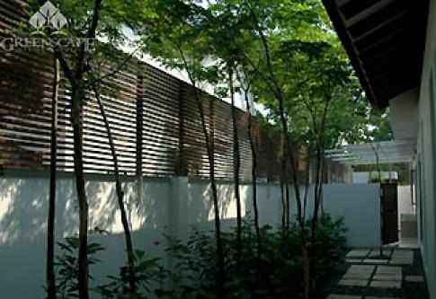 Tường rào gỗ