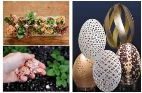 20 mẹo sử dụng trứng và vỏ trứng độc đáo