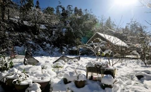 4 thiên đường ngắm tuyết rơi chuẩn nhất Việt Nam