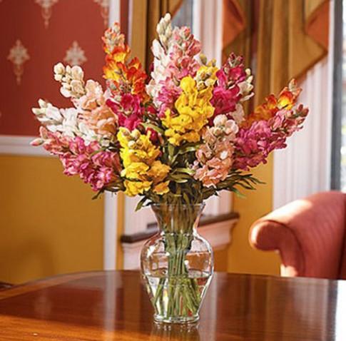 6 ý tưởng trang trí nhà bằng hoa giả