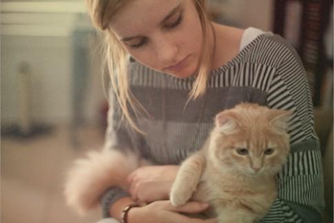 Có những ngày lười biếng như một con mèo...