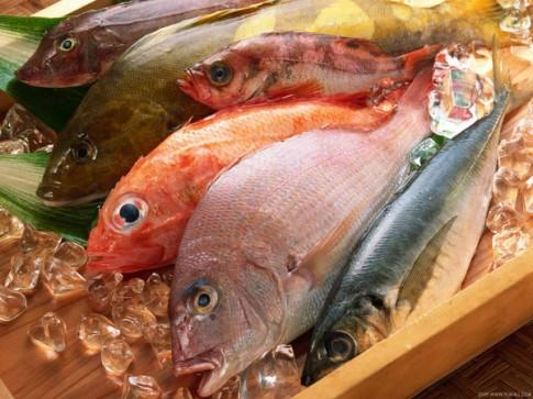 Coi chừng ung thư vì ăn thực phẩm đông lạnh lâu ngày