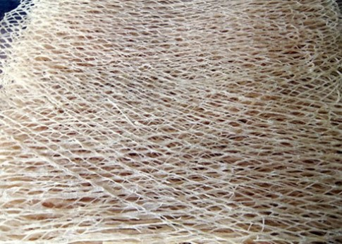 Dân dã món phở sắn trộn nhộng và chuối cây Quảng Nam