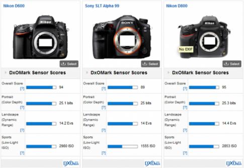 Điểm cảm biến Sony A99 thua Nikon D600