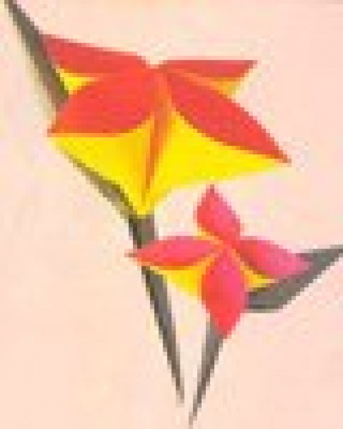 Gấp hoa cài áo