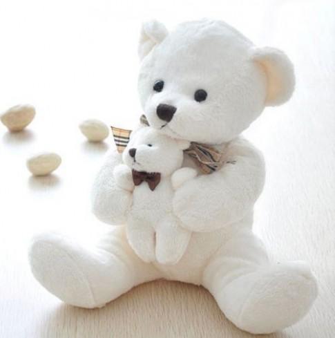 Gấu bông có bầu