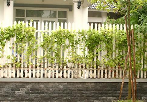 Hàng rào - an toàn và thẩm mỹ