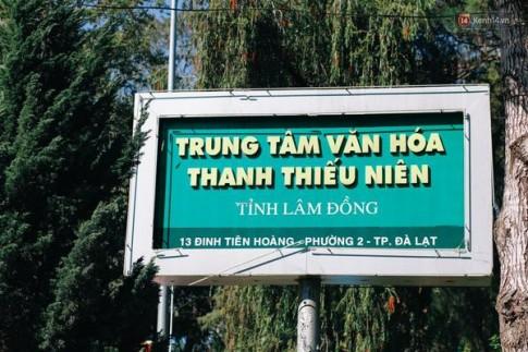 Không phải rừng thông, không phải Lữ Tấn, đây chính là địa điểm chụp ảnh đang hot nhất Đà Lạt!