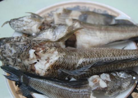 Lạ miệng với mì Quảng cá lóc