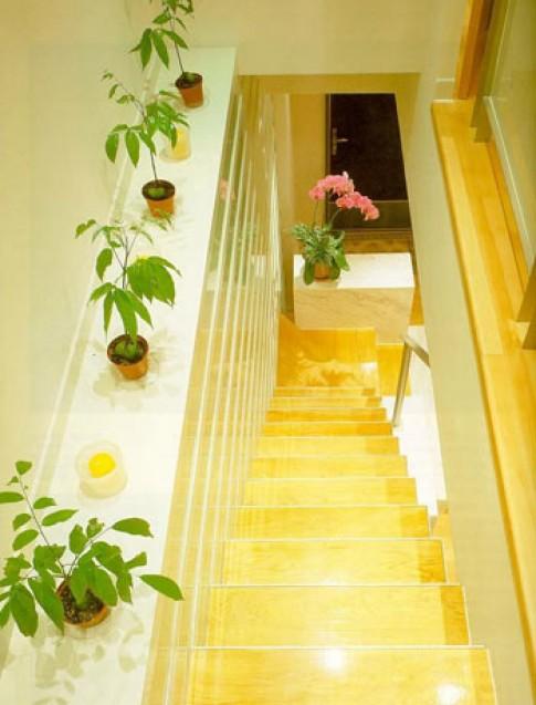 Làm đẹp cầu thang trong nhà