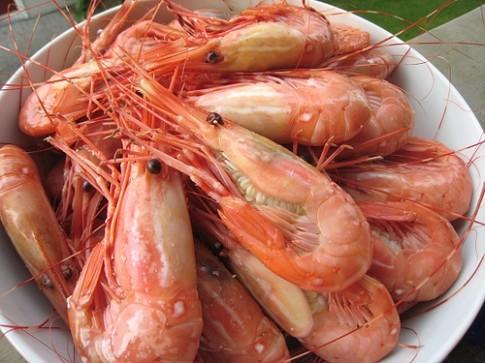 Mẹo chọn và nấu tôm biển tươi ngon