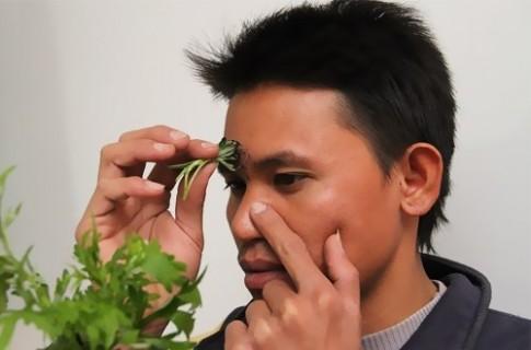 Mẹo dân gian trị dứt điểm nghẹt mũi chỉ trong vòng 3 nốt nhạc