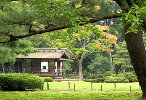 Nét đẹp quyến rũ của vườn Nhật