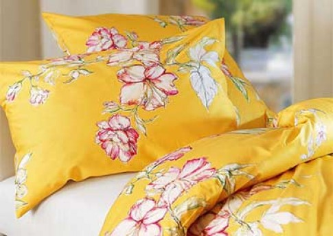Những chiếc giường 'nở hoa'