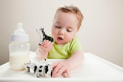Những lưu ý khi trẻ dị ứng đạm sữa bò
