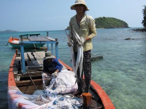 Ra đảo Hòn Nồm thưởng thức cá xương xanh