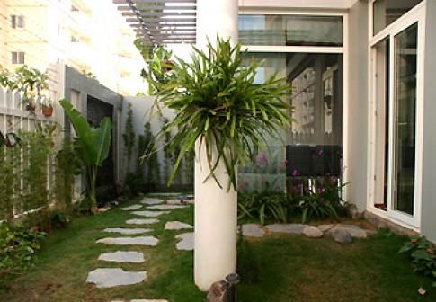 Tạo vườn cho nhà phố