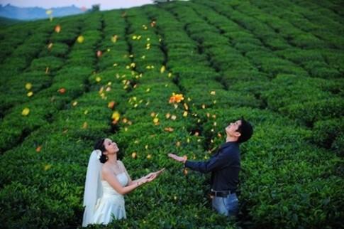 Thiên đường tình yêu cho mùa Valentine 2015 tại Mộc Châu