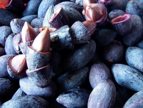 Trám đen - biến món ăn dân dã thành 'đặc sản'