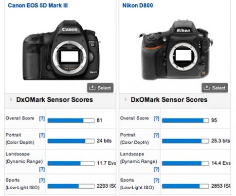Video so sánh vui giữa Nikon D800 và 5D Mark III