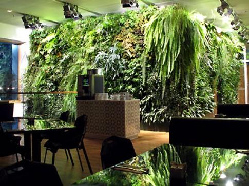 Vườn thẳng đứng trong nội thất