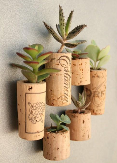 4 cách tạo khu vườn mini cho ngôi nhà