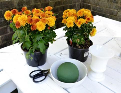 Cắm hoa cúc để bàn đẹp trong 5 phút