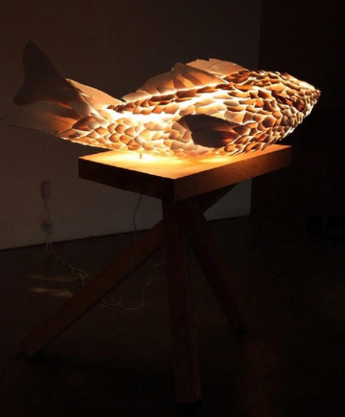 Đèn cá đẹp lung linh trong bóng tối