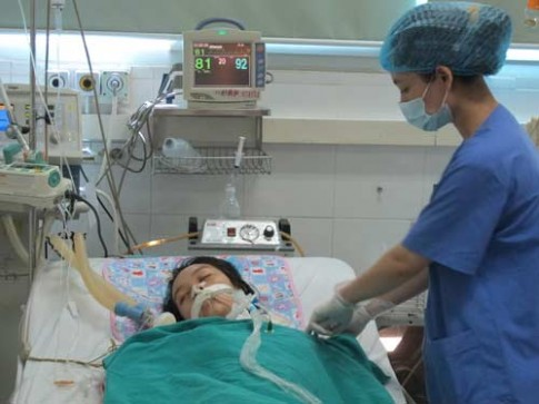 Hai người nguy kịch vì viêm não Nhật Bản
