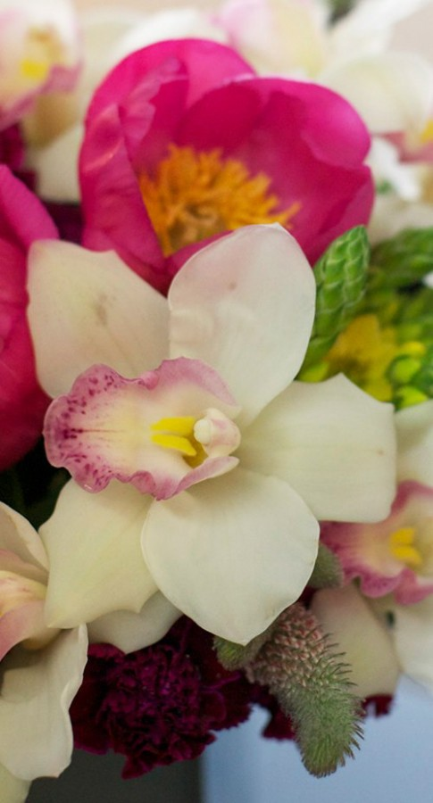 Hoa đẹp 20-10: Cắm Địa lan để bàn 'hút mắt'