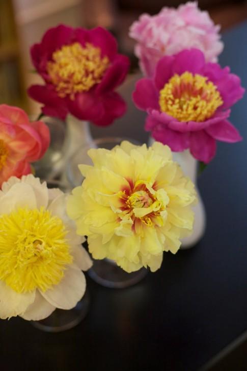 Hoa đẹp 20-10: Cắm Mẫu đơn làm điệu bàn ăn