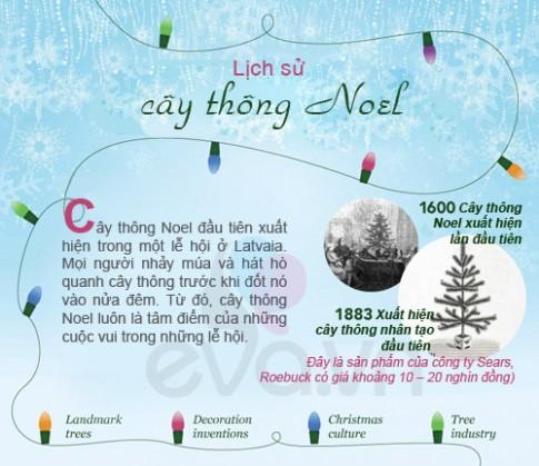 Infographic: Lịch sử 400 năm của cây thông Noel