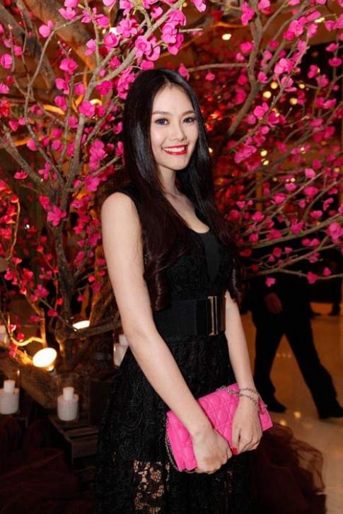 Thanh lich nhu 2 'ban sao' Tang Thanh Ha
