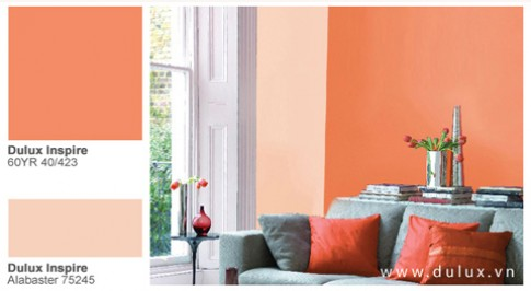 Thay đổi không gian nhàm chán bằng màu sắc