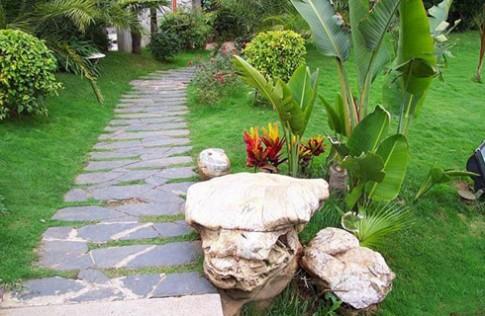 Thiết kế nhà vườn một tầng đẹp, tiết kiệm