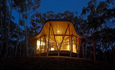 'Túp lều' hiện đại giữa rừng cây