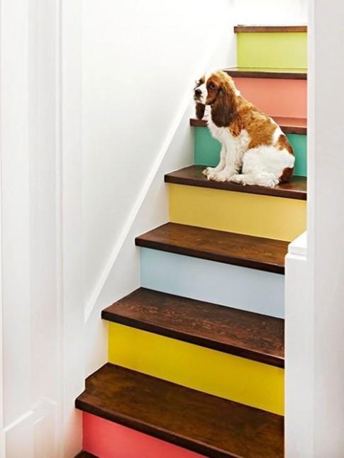 10 ý tưởng sáng tạo sơn cầu thang đẹp